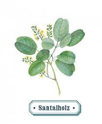 Santalholz